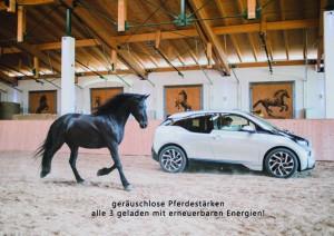 pferdestaerken_k